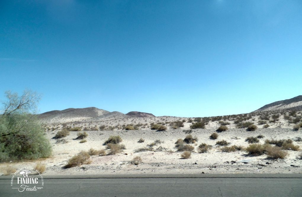 Finding Feasts -Vegas road trip